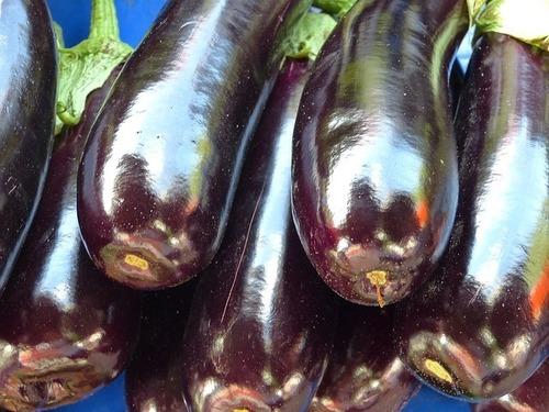 eggplant-65298_640.jpg